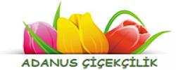 Adanus Çiçekçilik Adana Adanus Çiçekçilik Adana