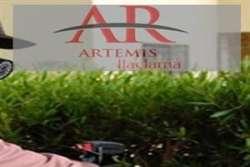 Artemis böcek ve haşere ilaçlama Artemis Böcek ve Haşere İlaçlama Hizmetleri Garantili, Sertifikalı böcek, haşere, fare, pire, hamam böceği, akrep ve her türlü zararlı ilaçlama için 7/24 tüm semtlerde hizmetinizdeyiz