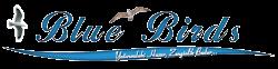 BLUE BIRDS HOMES kusadası yatırımınızdaki huzur zenginlik budur