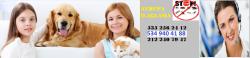 KADIKÖY İLAÇLAMA kadıköy haşere ilaçlama firması