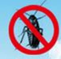 Kağıthane Böcek İlaçlama Kağıthane Böcek İlaçlama