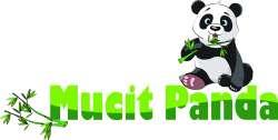 Mucitpanda Mucit Panda Eğitici Oyuncak
